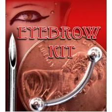 EYEBROW PIERCING KIT *NEEDLE* + 5/16 CURVED BAR -16G